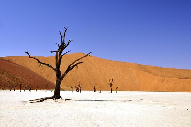 Afrika Rucksackreisen
