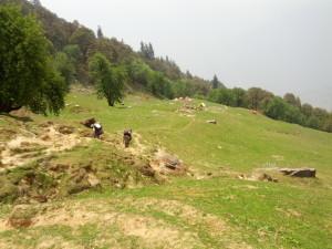 Himalaya Trekking Trip