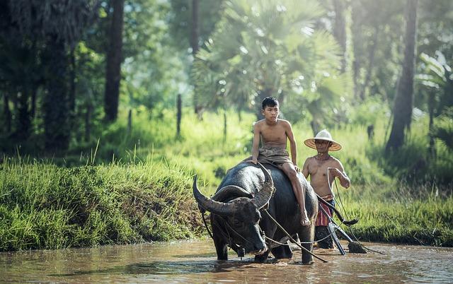 Aberglaube in Vietnam - Teil der faszinierenden Kultur