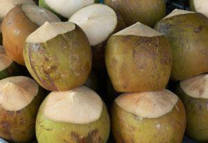 Die Kokosnuss verfärbt die Haut - Aberglaube in Vietnam