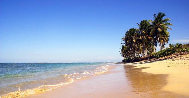 Strand und Palmen Dominikanische Republik