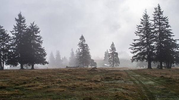 Natur in Rumänien