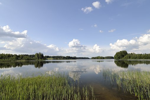 Seen in Estland
